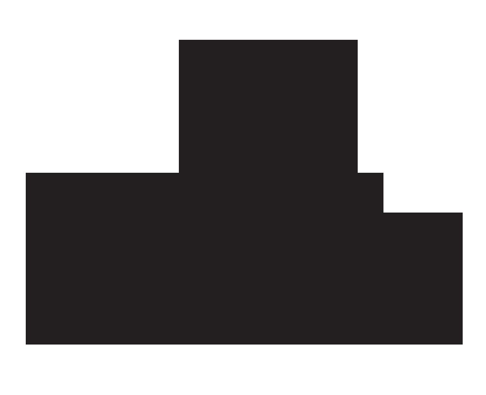 Platform Beer web logo